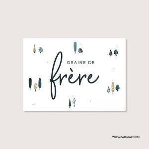 Cartes ensemencées - Graine de frère - Français