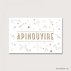 Cartes Postales - Apinouyire - Français